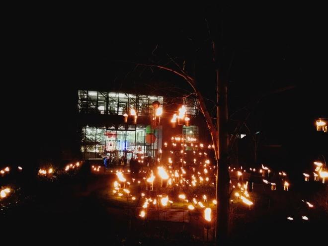 Fire illuminate festival